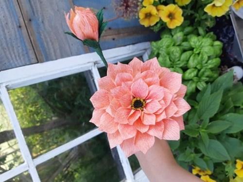 Lær at lave en Dahlia af crepepapir